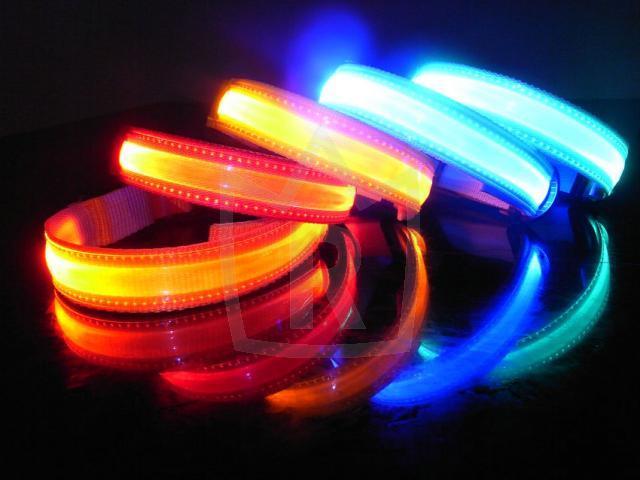 Hundehalsband LED 4 Farben