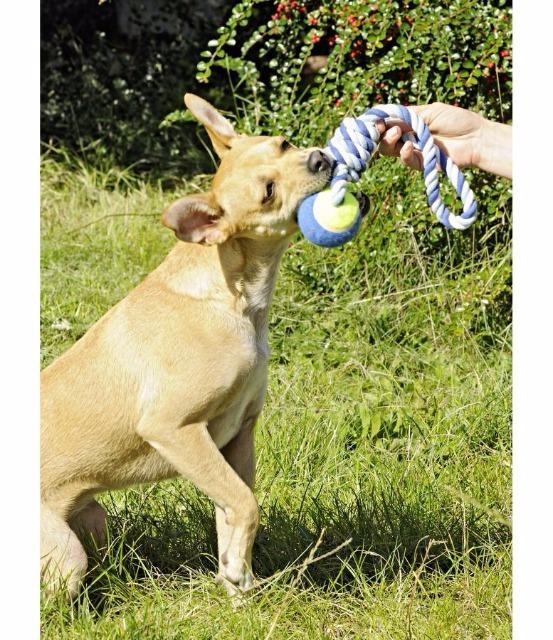 Tierspielzeug Ball mit Schlaufe