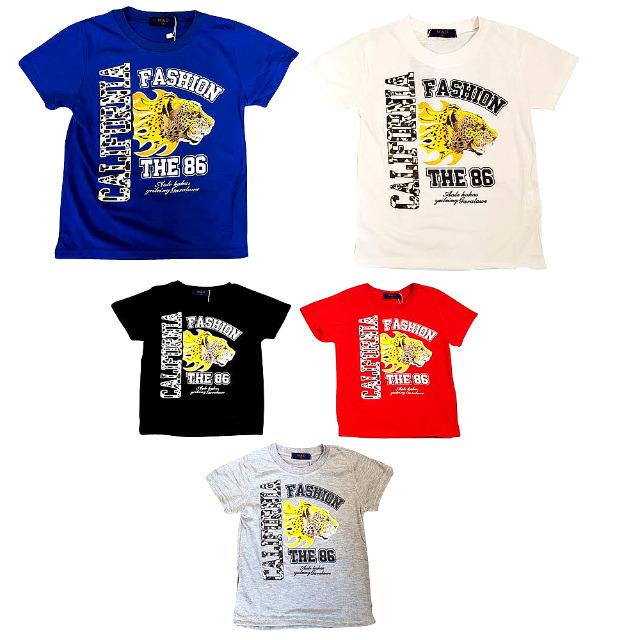 9f04ea1d8d9b7c Kinder Jungen Frühling Sommer Freizeit Shirts Gr. 2-12 J. je 2
