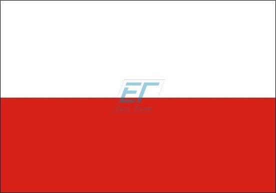 POLEN Fahne 150 x 90cm