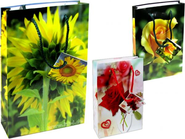 Geschenkbeutel CD/DVD (150x35x229 mm), Sommer, 6 Motive, auch für Bücher geeignet