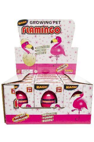 21-9241, Flamingo Ei wachsend