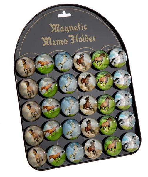 "Magnet ""Pferde""6/s, 3,5 cm dMagnet ""Pferde"", 6/s, 3,5 cm d"