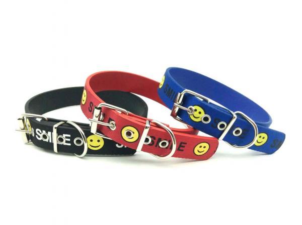 Hundehalsband 2.5cm*52cm
