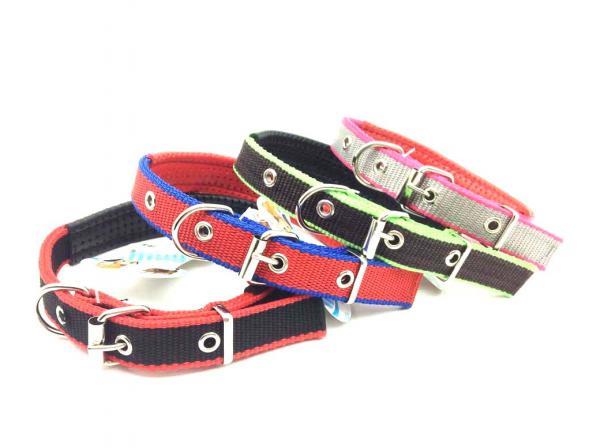 Hundehalsband 2cm*49cm