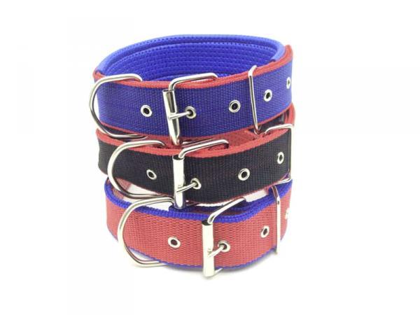 Hundehalsband 4cm*67cm