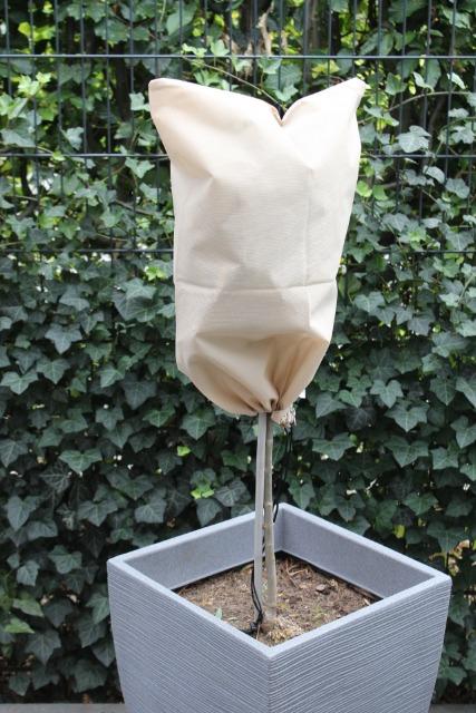 Großposten 3010 Sets á 3 Stk. WENKO Winterschutzhauben für Pflanzen beige 60 x 40 cm