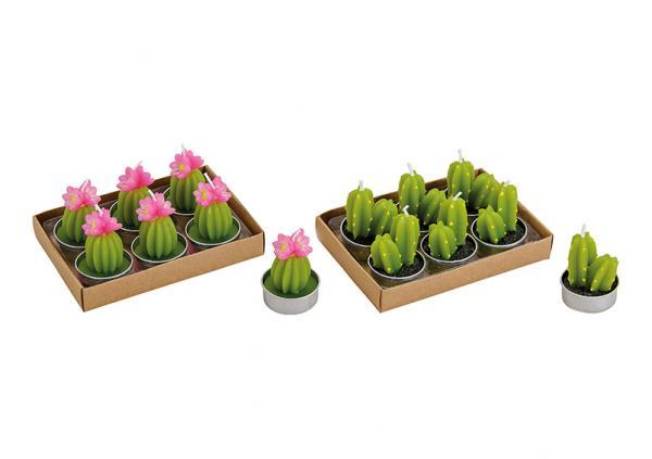 Teelicht-Set Kaktus (4x5x4cm) aus Wachs Grün 6er Set, 2-fach, (B/H/T) 14x5x10cm