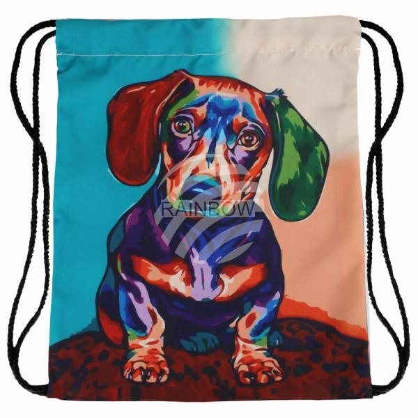 Gymbag Gymsac Rucksack multicolor Hund Dackel